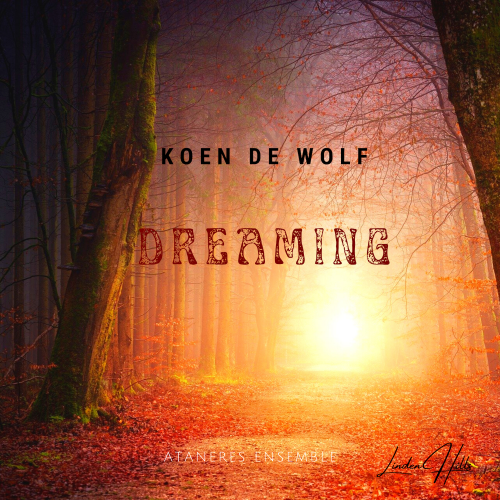 Dreamig cover